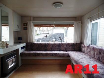 AR11 Albino